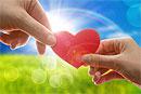 Любовь может быть вредной для здоровья?