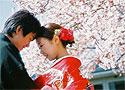 Сексуальные традиции Японии