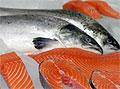Жирная рыба улучшает качество спермы
