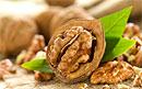 Грецкие орехи защищают от рака простаты
